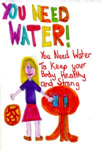 The importance of water for human body essay